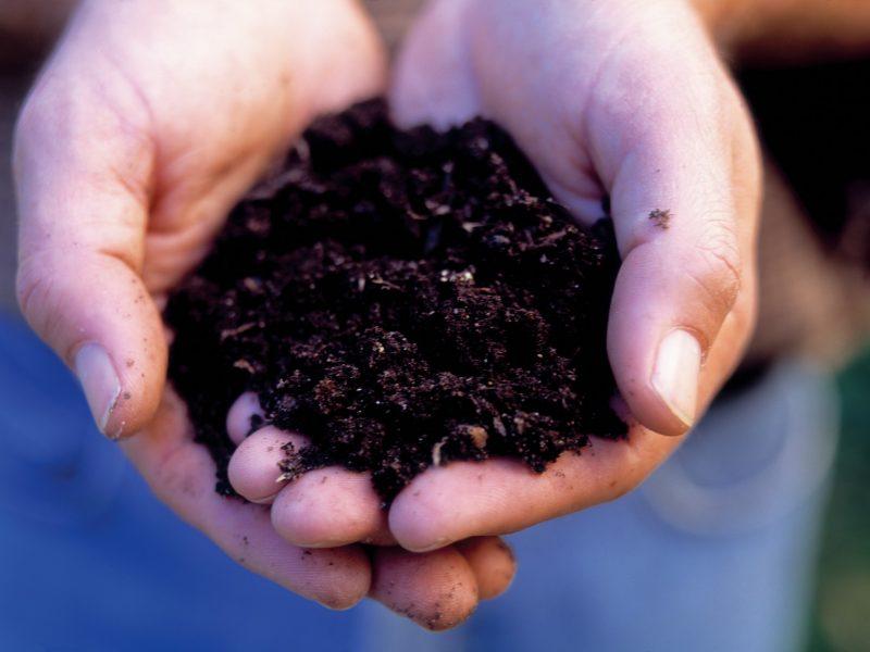 Compost machine for bio-plastic